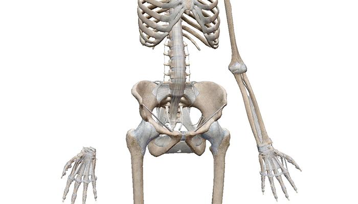 五十肩の痛みの原因とは??